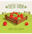 Fresh farm vector image