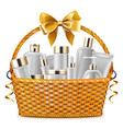 Gift Basket with Cosmetic Packaging vector image