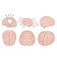 Human brain flat set vector image vector image