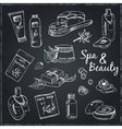 Spa beauty and care hand drawn elements vector image