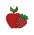 red apple and strawberry fruit vector image
