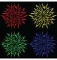 Colorful flower burst vector image