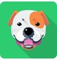 dog American Bulldog icon flat design vector image