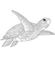 Zentangle stylized turtle vector image