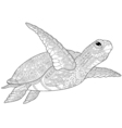 Zentangle stylized turtle vector image