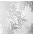 Background branch spruce gray vector image