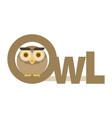 brown owl flat vector image
