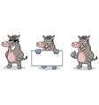 Gray Wild Pig Mascot happy vector image