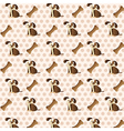dog pattern with dog and bones over dots backgroun vector image