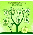 Apple Health Benefits 02 A vector image