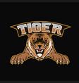 logo tiger mascot team sport vector image