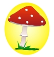 Single red mushroom on yellow background vector image