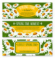 spring banner set with springtime flowers vector image