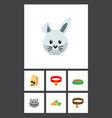 flat icon animal set of bunny nutrition box vector image