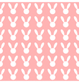 White Rabbit Pink Background vector image