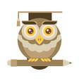 wise owl with pencil university graduation vector image