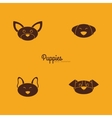 Cute dog Faces vector image