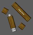 wood Dual-USB Micro USB Flash Drive vector image
