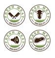 fresh meat labels set vector image