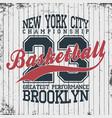 new york basketball sportswear emblem basketball vector image