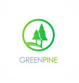 green pine tree logo vector image