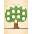 genealogy tree vector image