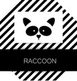 raccoon animal template vector image vector image