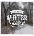 Creative graphic message for winter design vector image