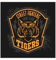 Street fighters - Fighting club emblem on dark vector image
