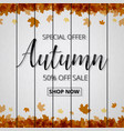 autumn sale poster or banner for shopping with vector image