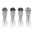 jellyfish icon set vector image