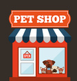 veterinary centre design vector image
