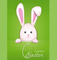 easter bunny on a green vintage background easter vector image