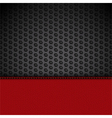 red leather panel on black mesh vector image