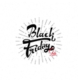 Black Friday sale - stickers badges has written vector image