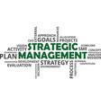 word cloud strategic management vector image