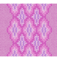 Knitted Ornament vector image vector image