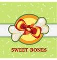 Sweet bones great gift for a pet vector image