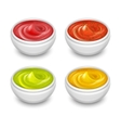Different gourmet sauces mustard ketchup soy vector image