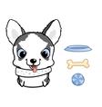 Cute siberian husky puppy vector image