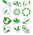 collection of leaves for design vector image
