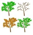 seasonal trees vector image