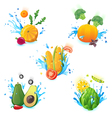 vegetables in splashes vector image vector image