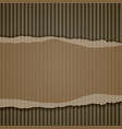 torn corrugated cardboard border vector image
