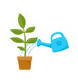 flat cartoon green plant in the ceramic pot vector image