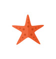 flat cartoon red textured starfish star fish vector image
