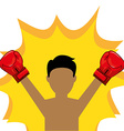 boxing sport vector image