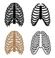 human rib cage symbols vector image