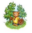 bruin bear with pine cones vector image