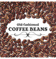 roasted coffee bean background vector image